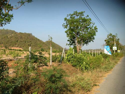 Участок под строительство 37 Rai 3ngan